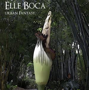 Elle_Boca_Plant-300x303