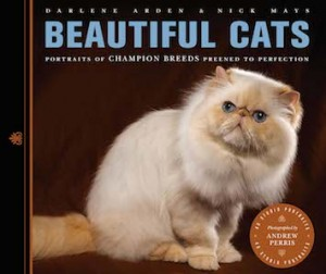 Beautiful Cats Cover