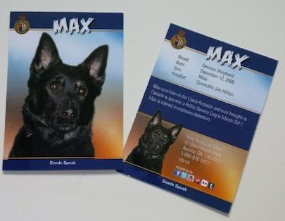 6 Max baseball card